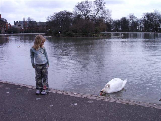 beth_with_swan_Small.jpg