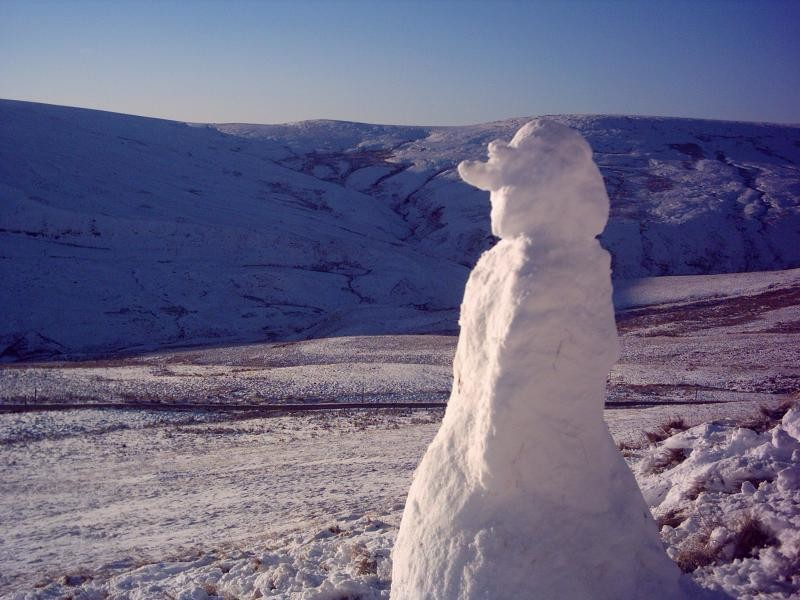 Snowman over looking his empire...