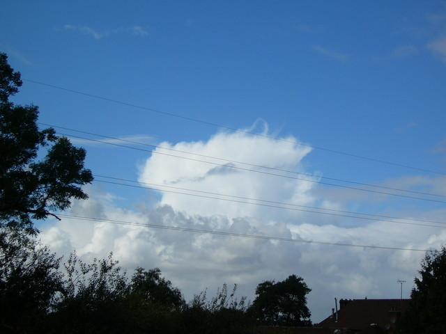 Hairy Cell Cloud