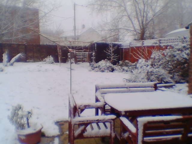 snow in Peterborough, the next one is of a pig with wings.