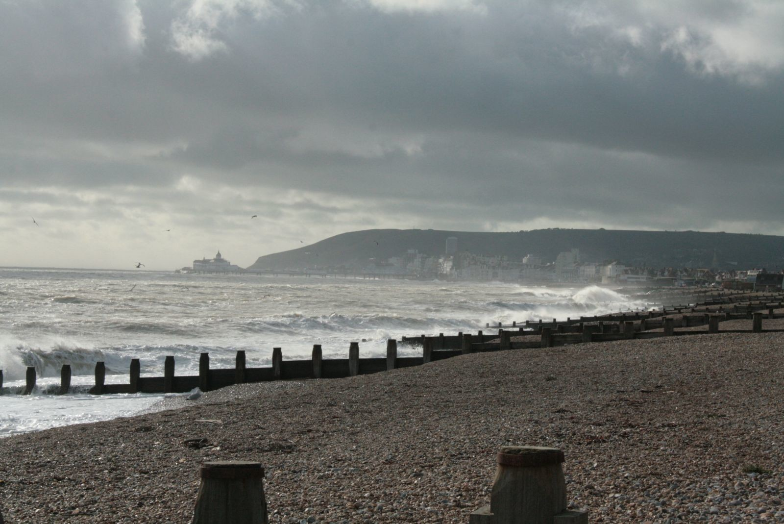 Seafront 041112 (18)