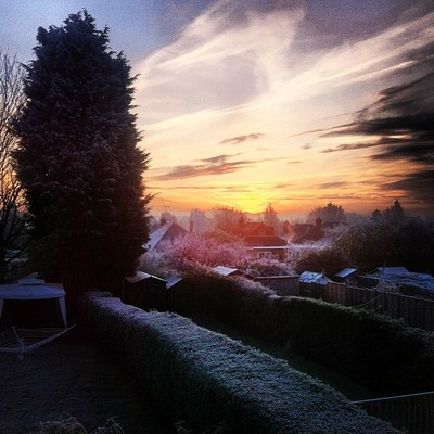 Frosty view from my back garden