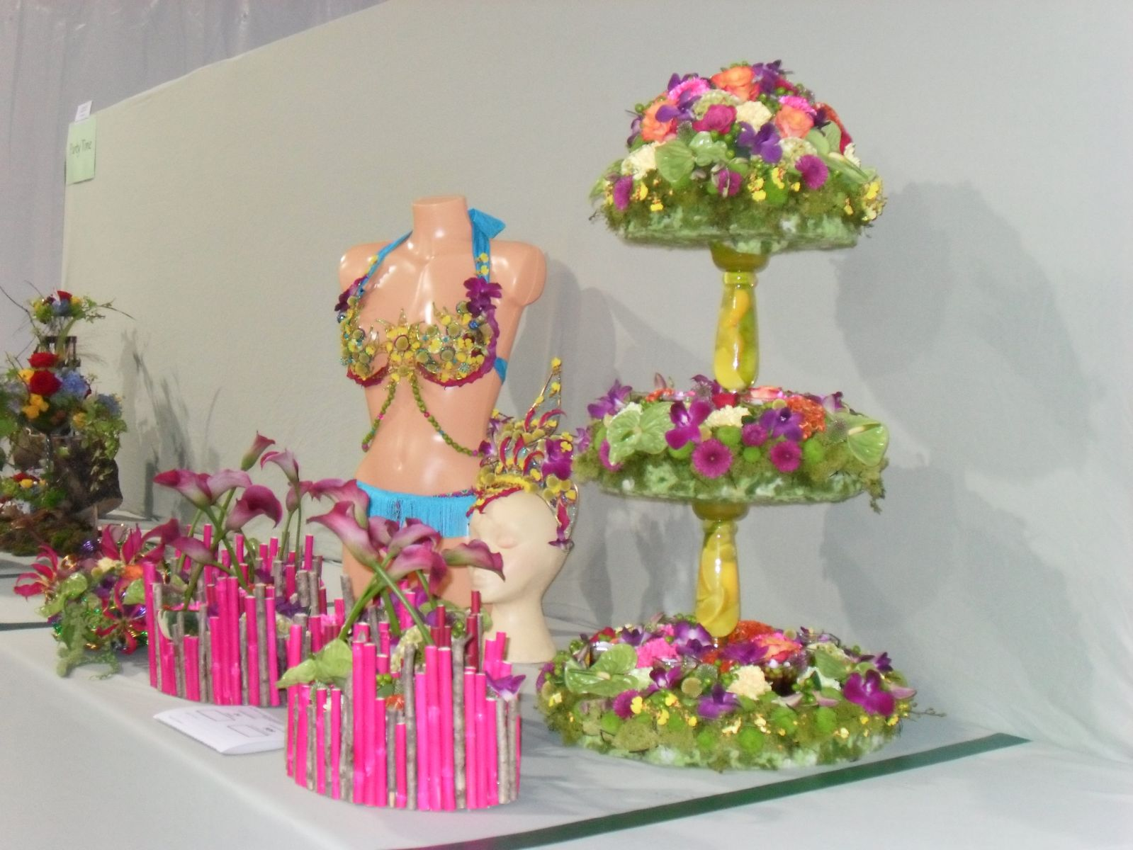 SOUTHPORT FLOWER SHOW 2014 GOLD AWARD DISPLAY
