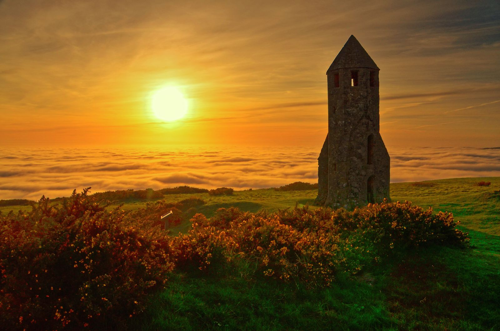 Oratory Fog sunset