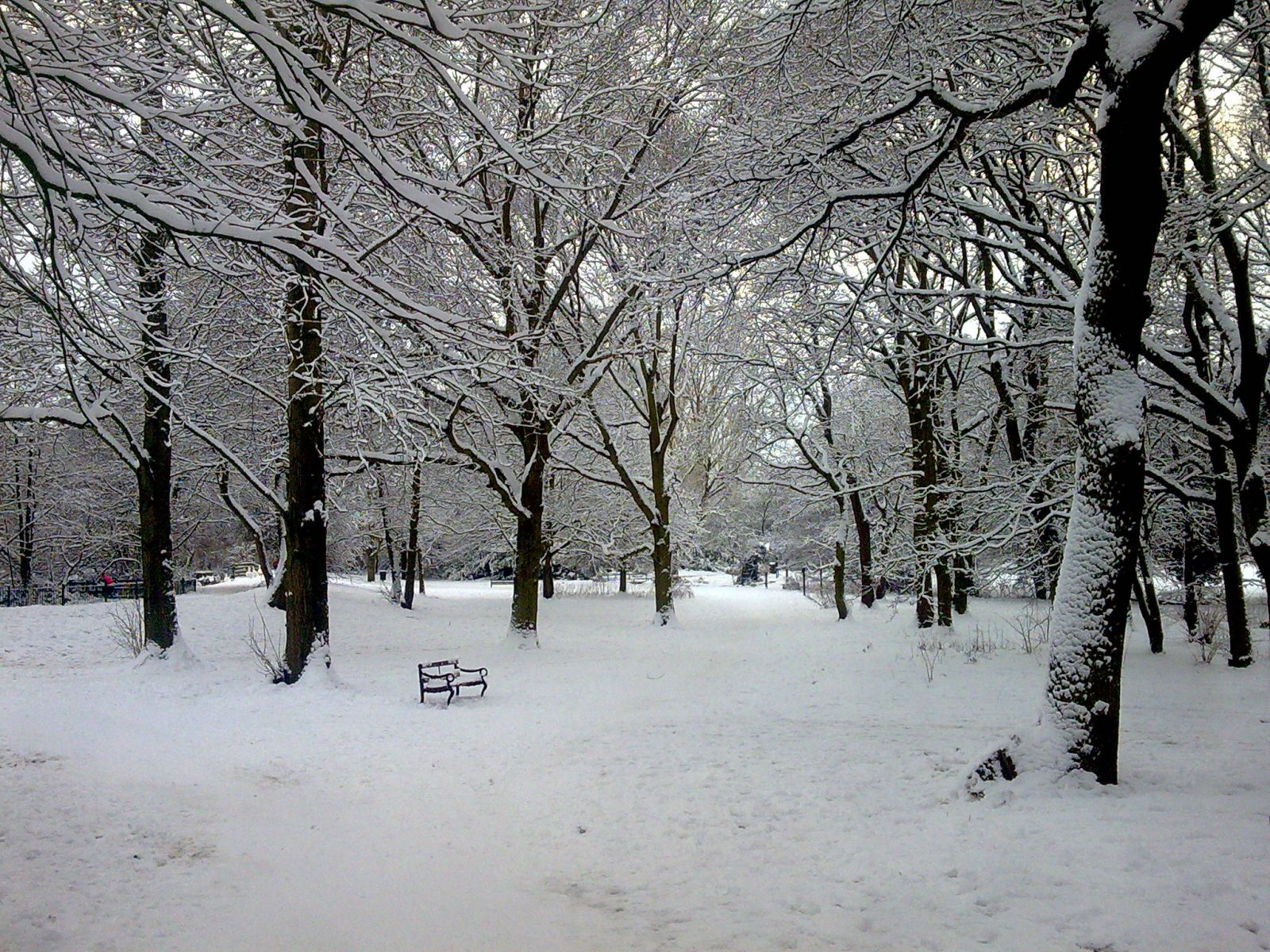 Solihull, Elmdon park in winter.