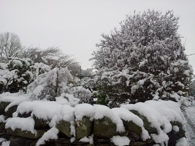 Snow today 14th Jan 2013