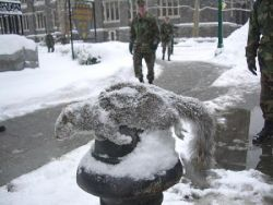 West Point Frozen Squirrel.jpg