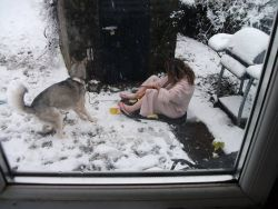and gracie as she is today in the snow we had before xmas - with liza being liza lol.jpg