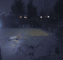 Snowy back garden at night last.jpg