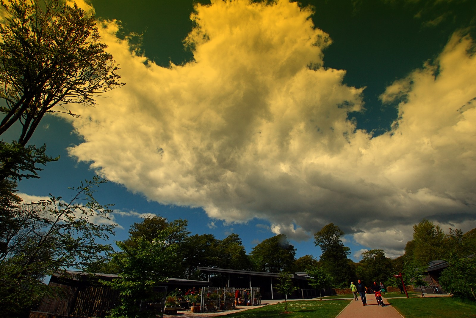 Cumulus over Lanhydrock yesterday
