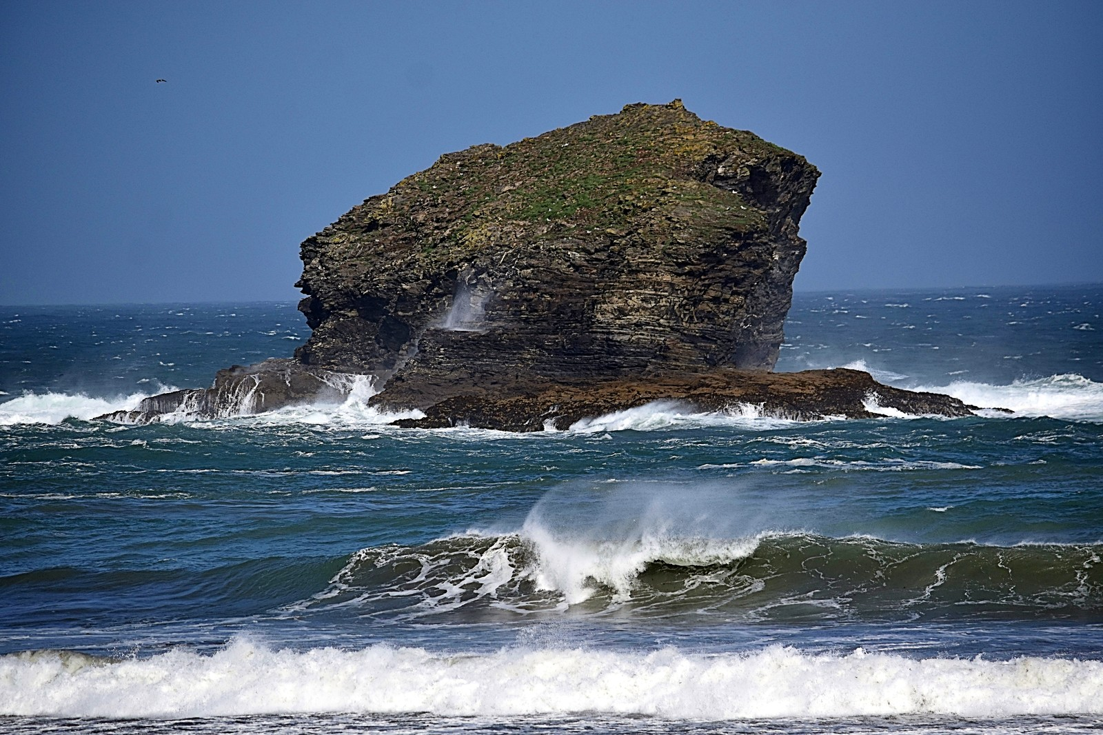 Gull Rock - Breezy at Portreath today