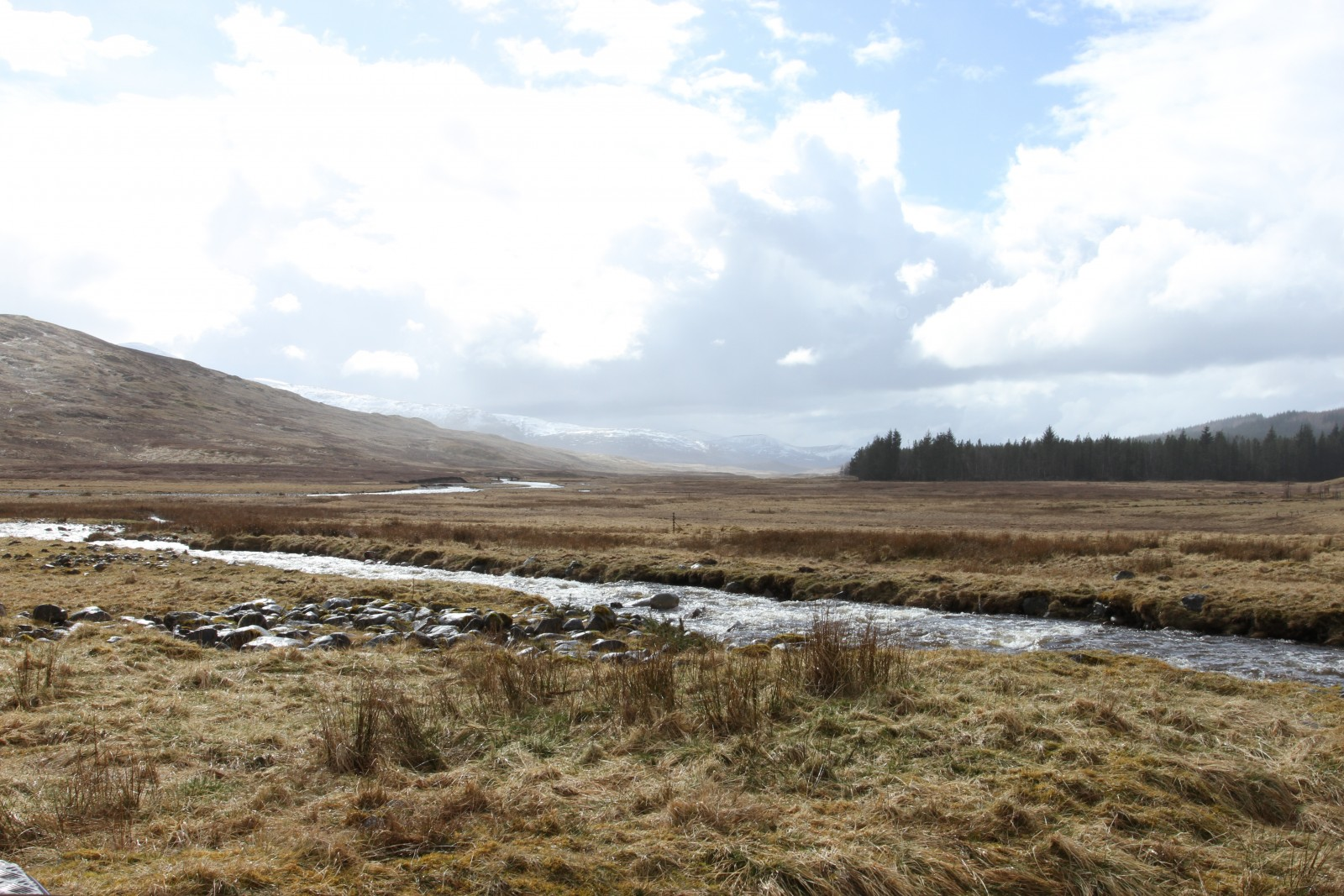 IMG_6556 Laggan to Fort Augustus Mar16.JPG
