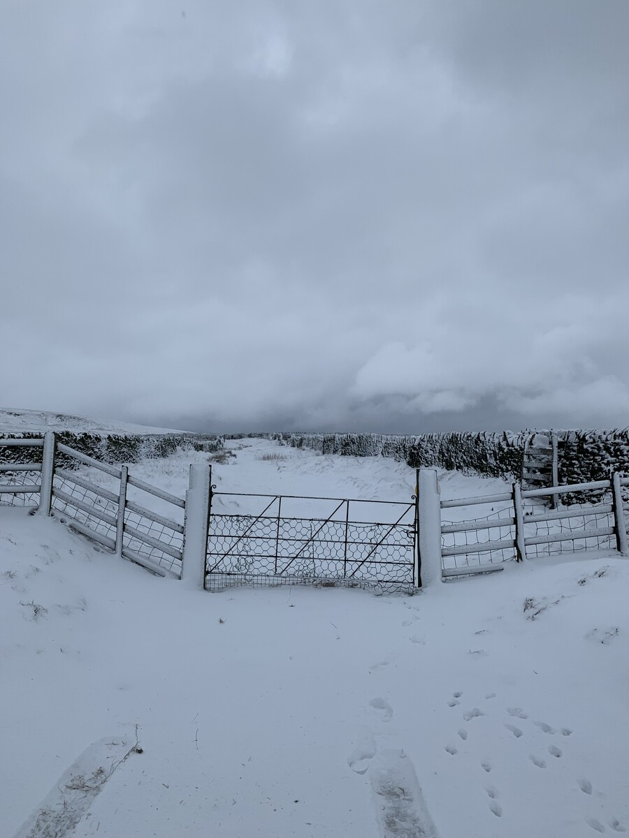 Pennine snow - Feb easterly starting....